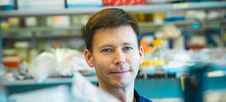 Dr. Timothy Kieffer in the lab. Photo Credit: Martin Dee